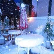 2014年東京の大雪 白銀の世界でしたねHP